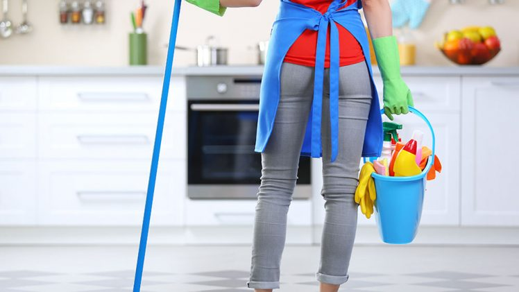 Housecleaning, Cooking, and Internet Network Marketing