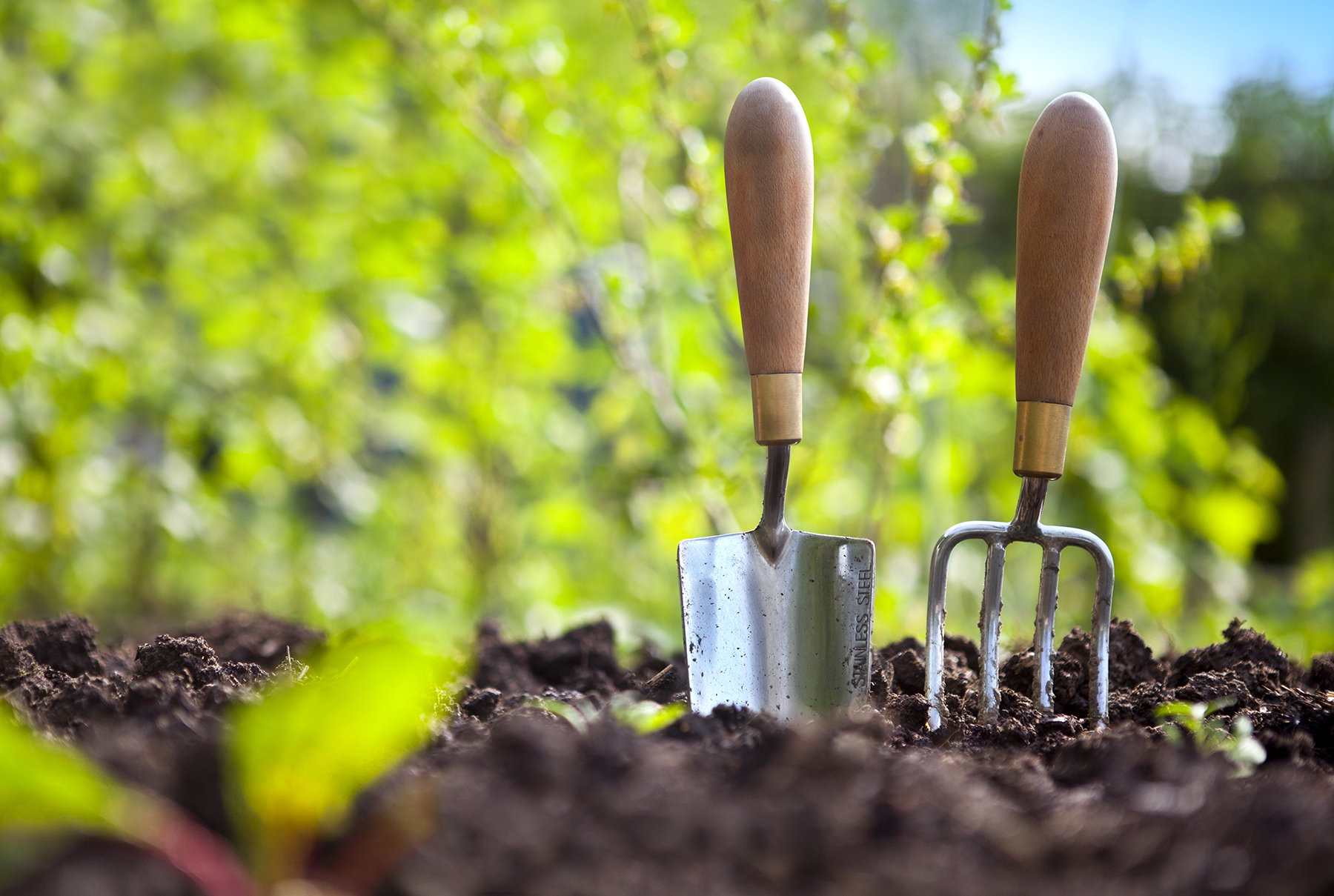 How To Have A Healthy And Happy Garden